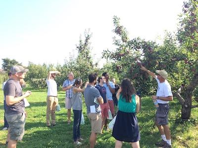 Internal Medicine residents apple picking.