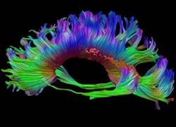 Radiology_Research.jpg