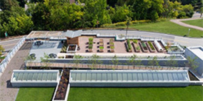 UVMMC Rooftop Garden